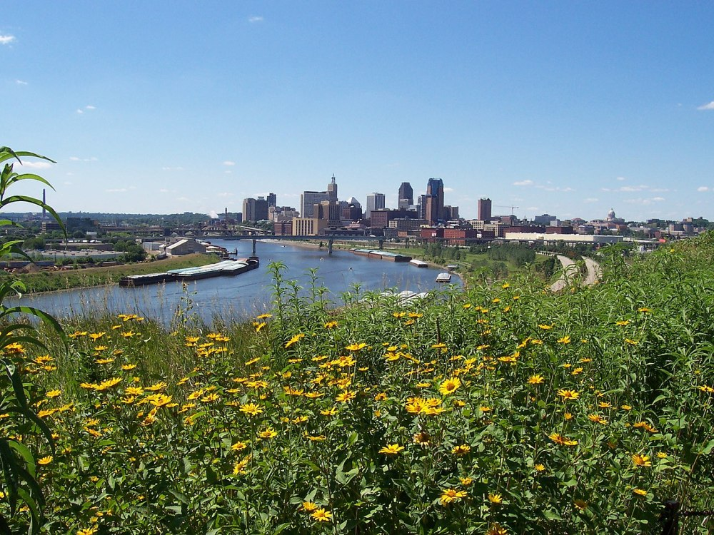 1440px-Saint_Paul_Over_Wildflowers