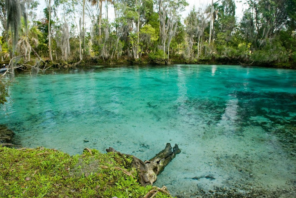 1614px-Three_sisters_springs_near_crystal_river_national_wildlife_refuge