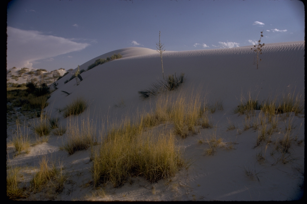 White_Sands_National_Monument_WHSA2684